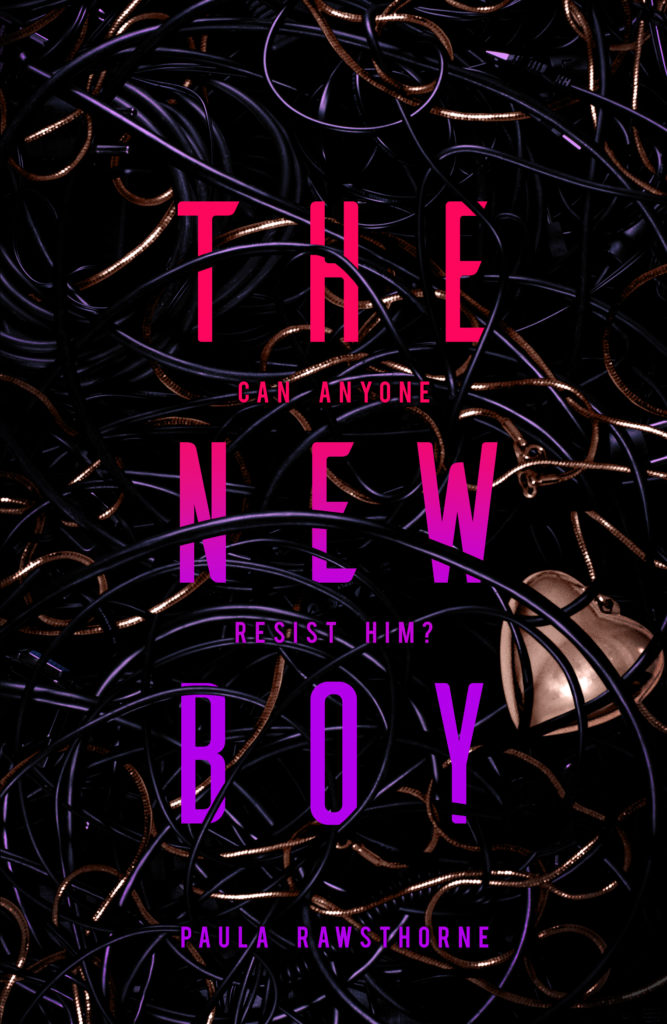 The New Boy by Paula Rawsthorne